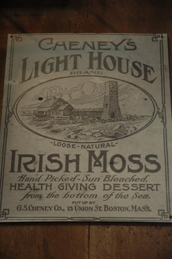 Bath Irish Moss.jpg