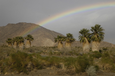 Borrego rainbow.jpg