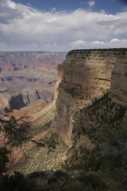 Grand Canyon tall view.jpg