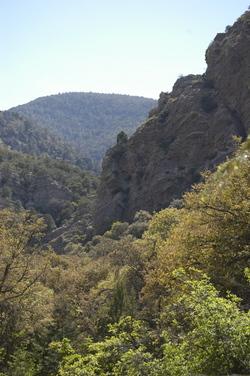 Ramsay Canyon.jpg