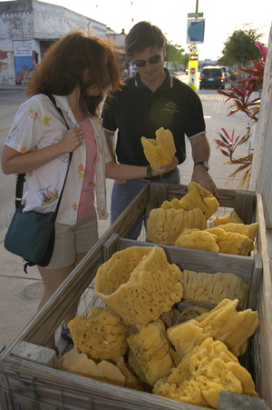 Tarpon Springs sponges.jpg