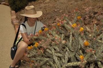 Tonto E flowers.jpg