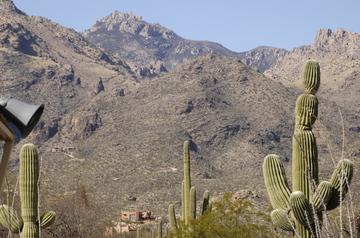 Tucson Catalina.jpg
