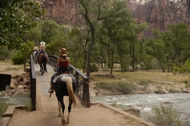 Zion horses.jpg
