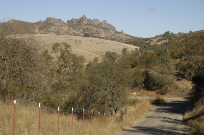 california146.jpg