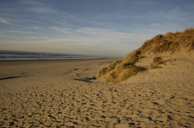 dunes1.jpg