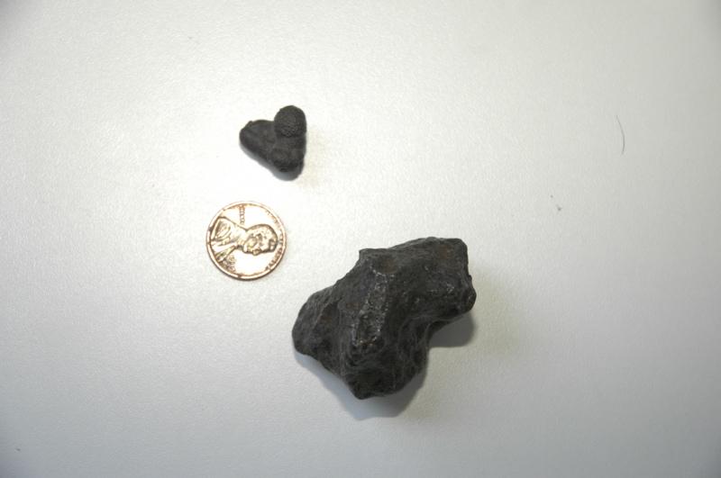 denver-meteorite-fossil.jpg