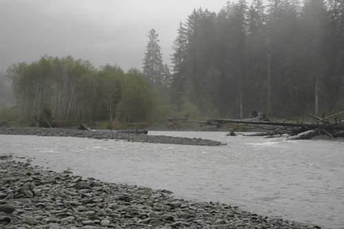 olympic-hoh-river.jpg