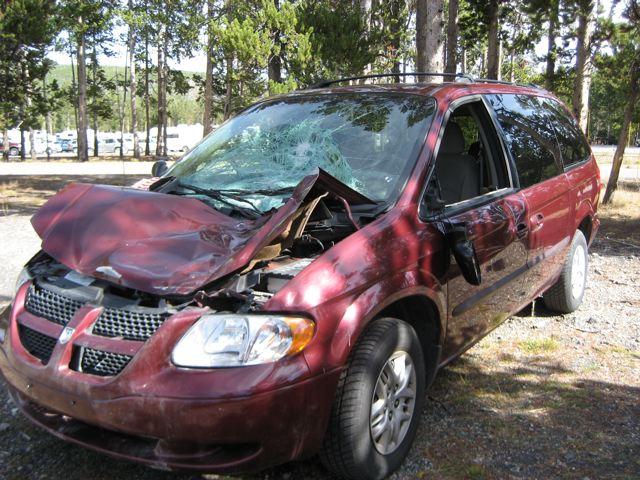 yellowstone-elk-car.jpg