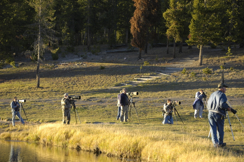 yellowstone-photogs.jpg