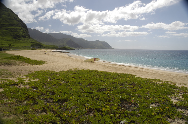 oahu-north-beach.jpg