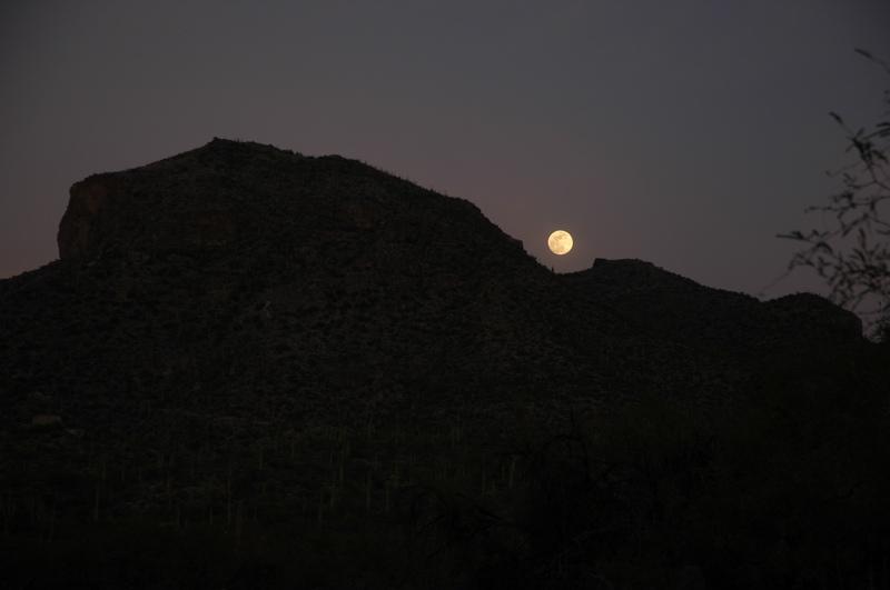 tucson-sabino-canyon-moonrise.jpg