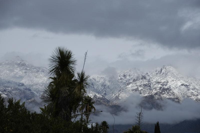 tucson-santa-catalina-snow.jpg