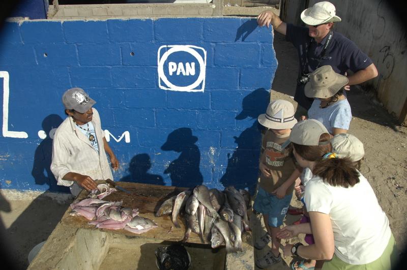bahia-kino-fresh-fish.jpg